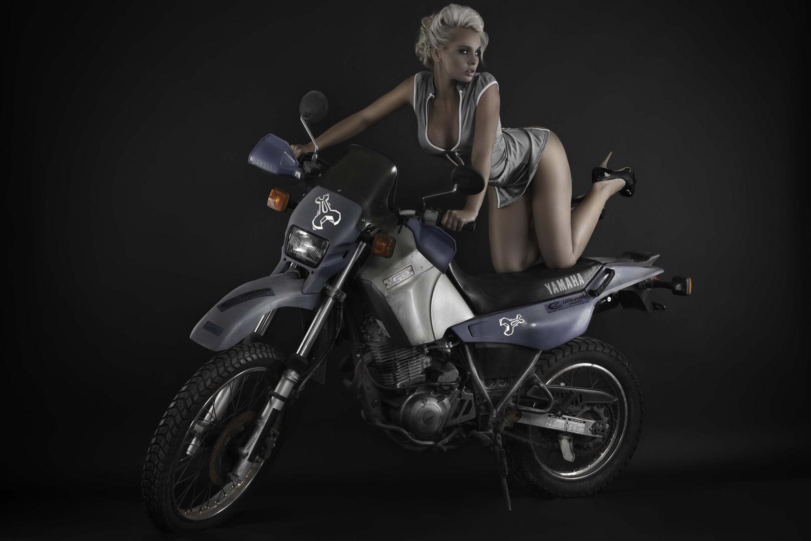 XT Rider
