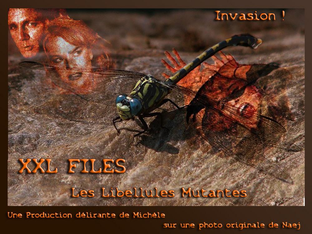 XXL Files - Libellules mutantes... L'Invasion !