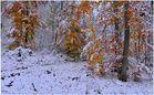 Ya ha nevado mucho (es hat schon sehr geschneit)