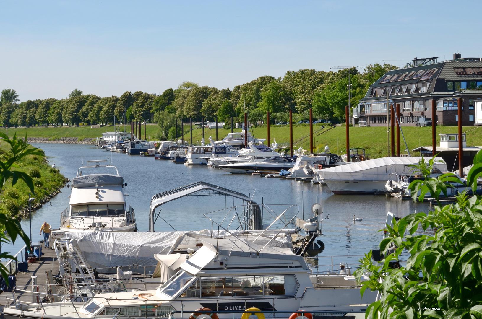 Yachthafen mit Blick auf den Yachtclub