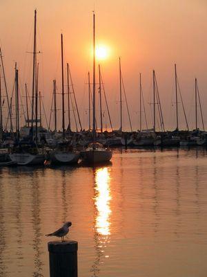 Yachthafen sonnunter
