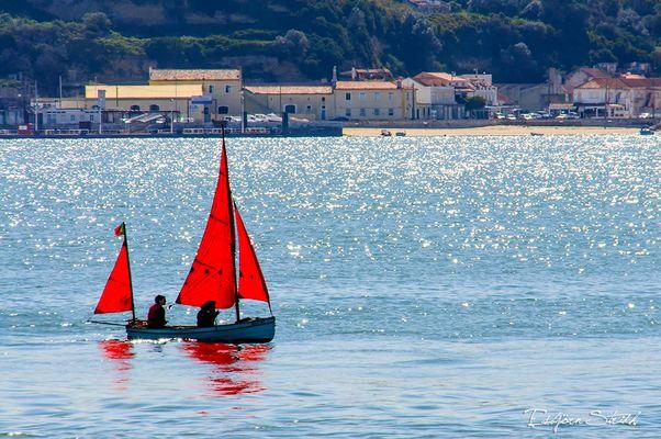 Yachting ?