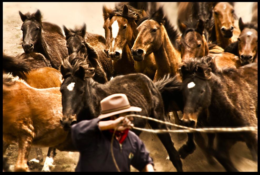 Yanahurco Rodeo 2008.