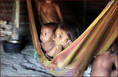 Yanumami Kinder- das Leben...