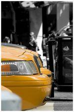 [Yellow Cap's]