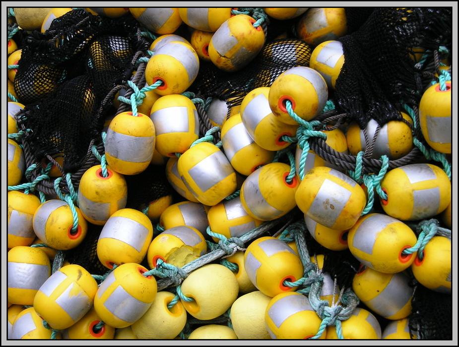 yellow mellows