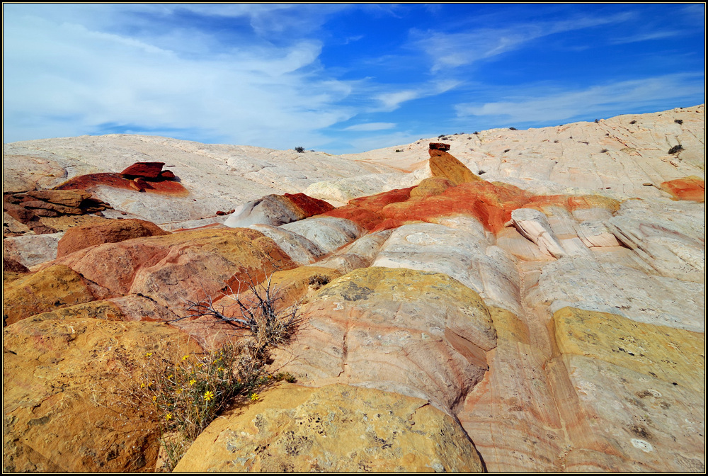 Yellow Rock Impressions
