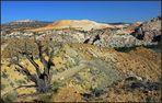 Yellow Rock View