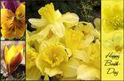 Yellow Spring und Happy Birthday ...