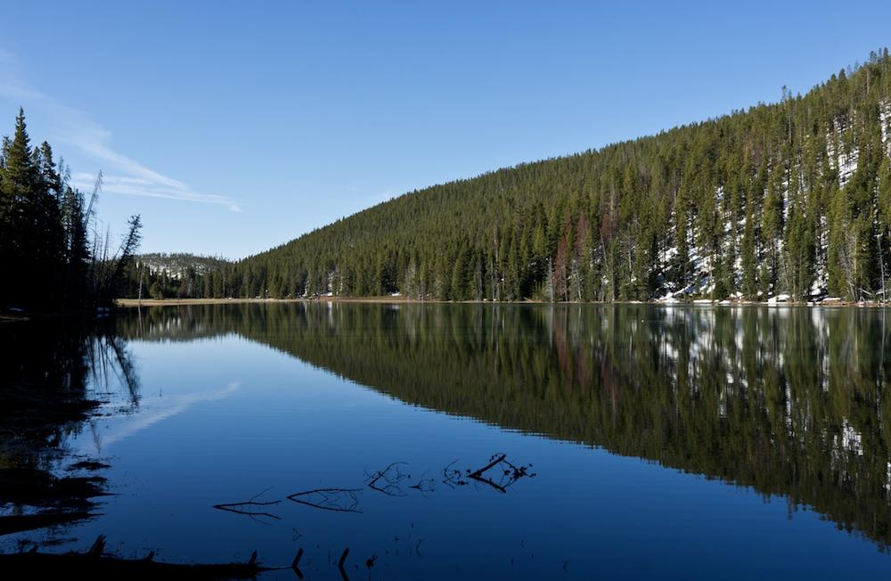 Yellowstone erwacht (V)