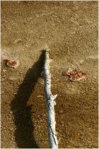 Yellowstone Strukturen I