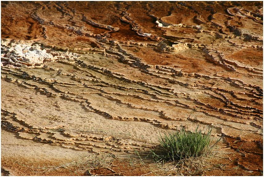 Yellowstone Strukturen quer III