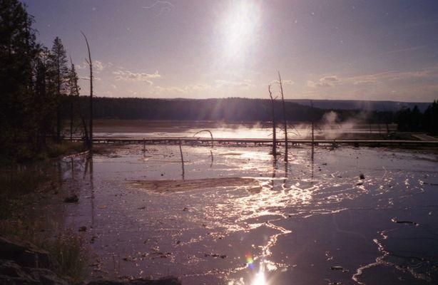 Yellowstone Swamp