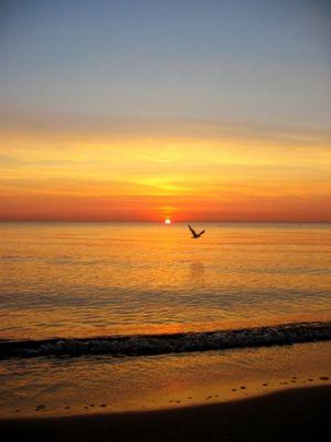 yet the same sunrise