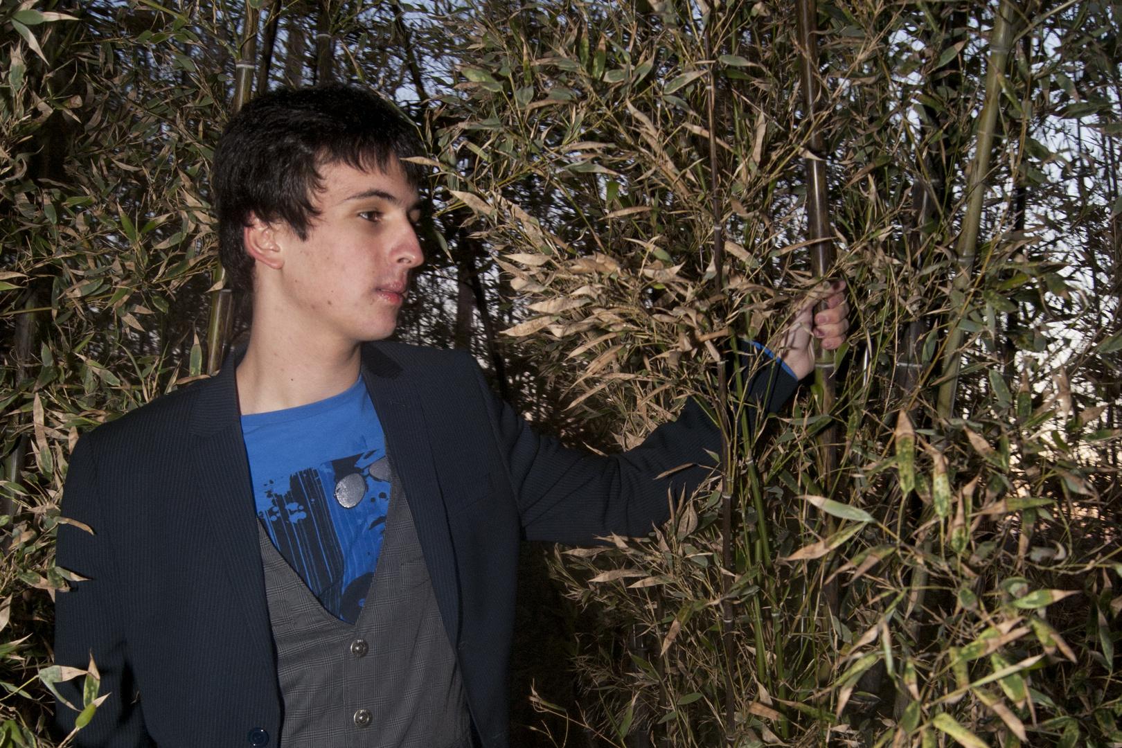 yo bamboo