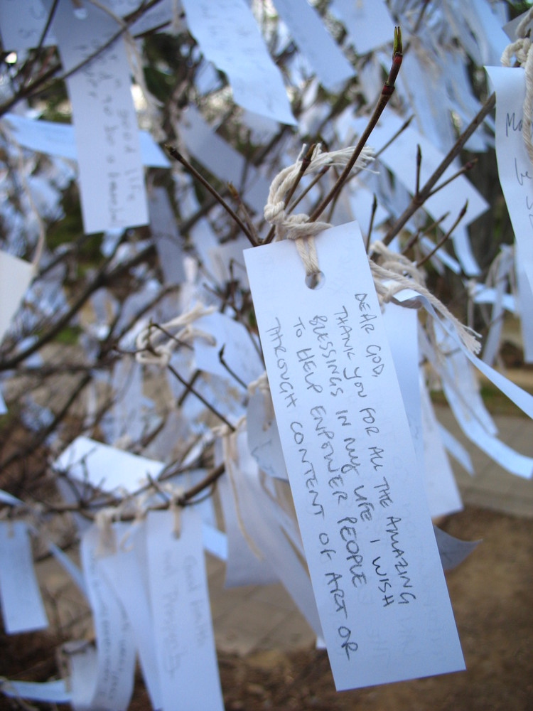 Yoko Ono's wish tree for Washington DC
