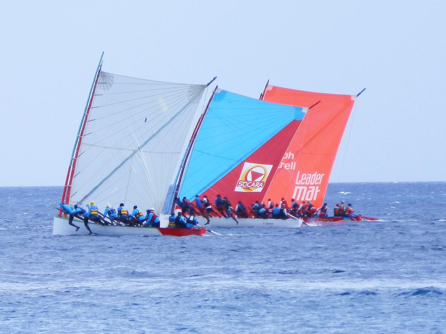 Yole-Regatten - Martinique
