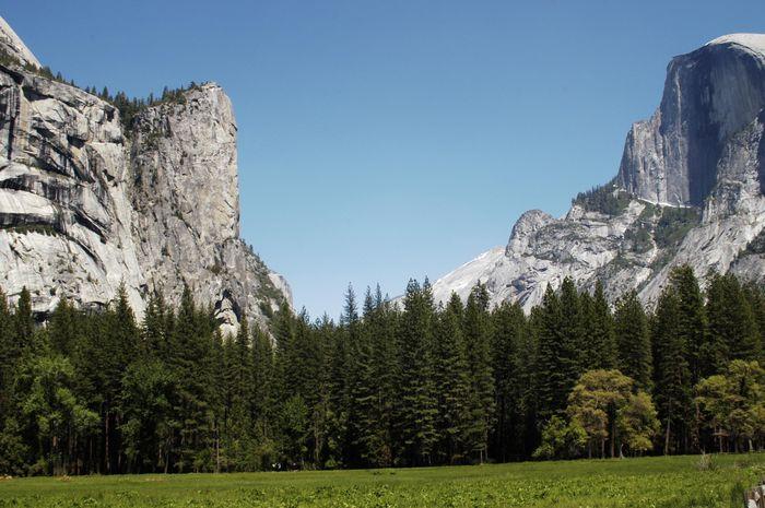 Yosemite Park 2004