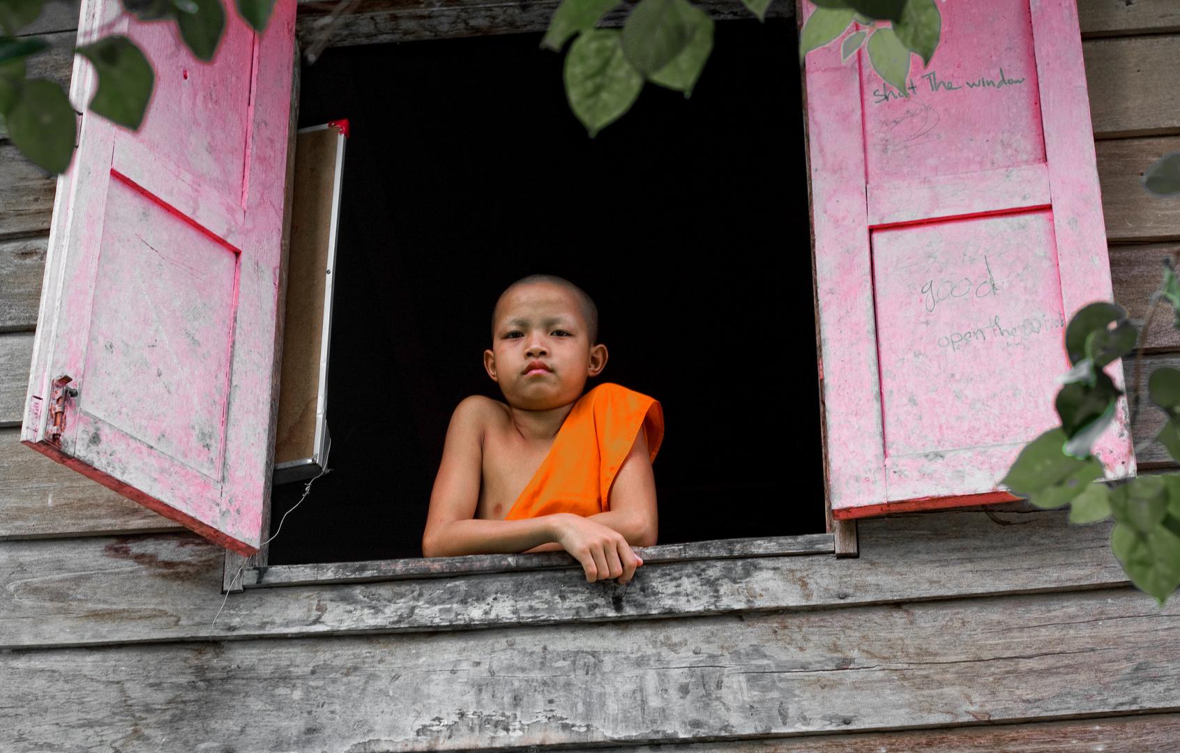 Young Novice in Luang Prabang