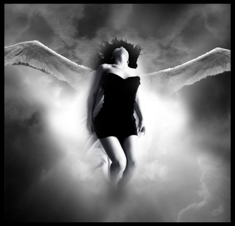 Your Heaven Lies