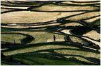 Yuanyang 1