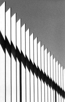 Z Fence (Der Zaun - in französischem Englisch)