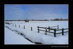 Zäune im Schnee