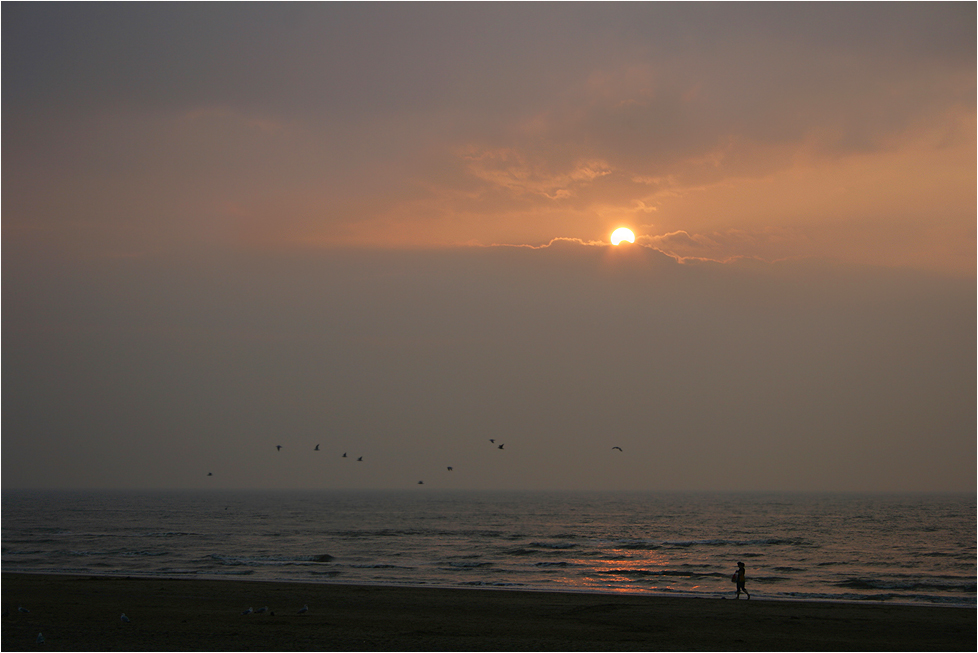 ~ Zandvoort ~