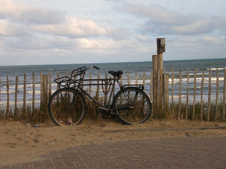 Zandvoort NL