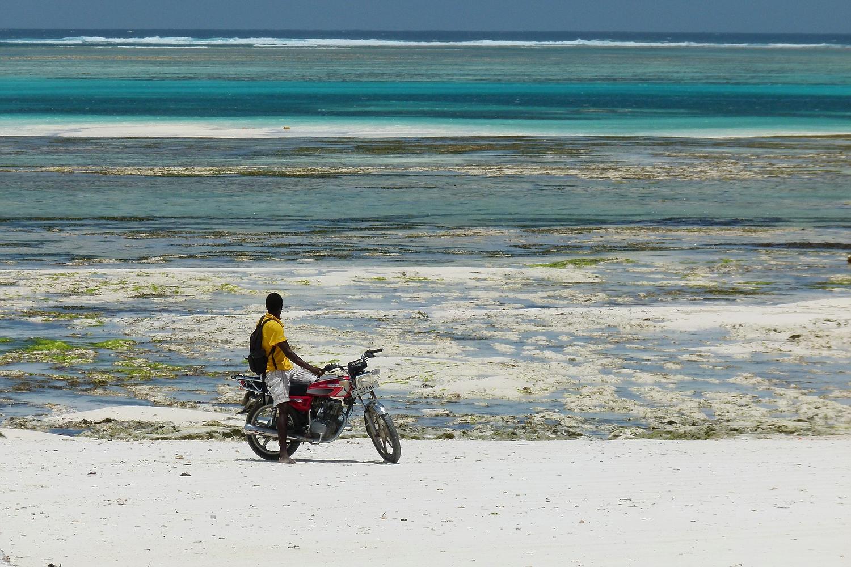 ...Zanzibar Beach life...