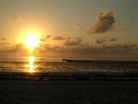 Zanzibars Grund