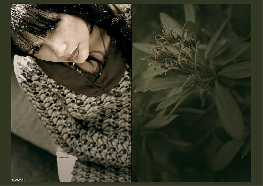 ... zarte Blüten der Hoffnung....