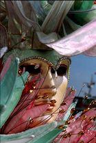 Zauber der Masken 01