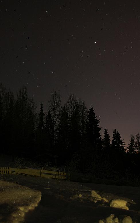 Zauber der Nacht