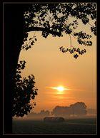 Zauber eines Morgens