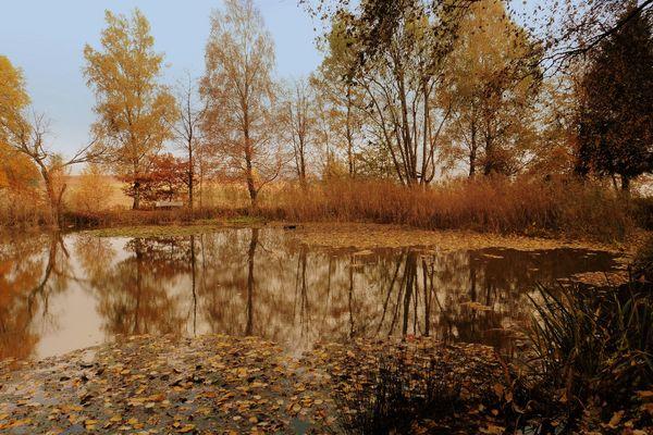 - Zauberhafte Herbstfarben-