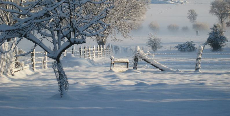 Zauberhafter Winter