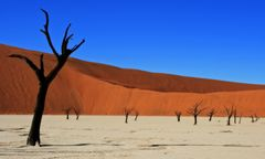 """Zauberhaftes Namibia"""