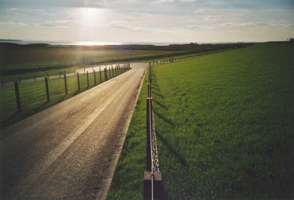 Zaun am Deich