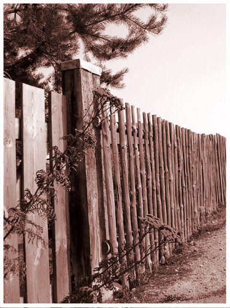 Zaun am Feldweg