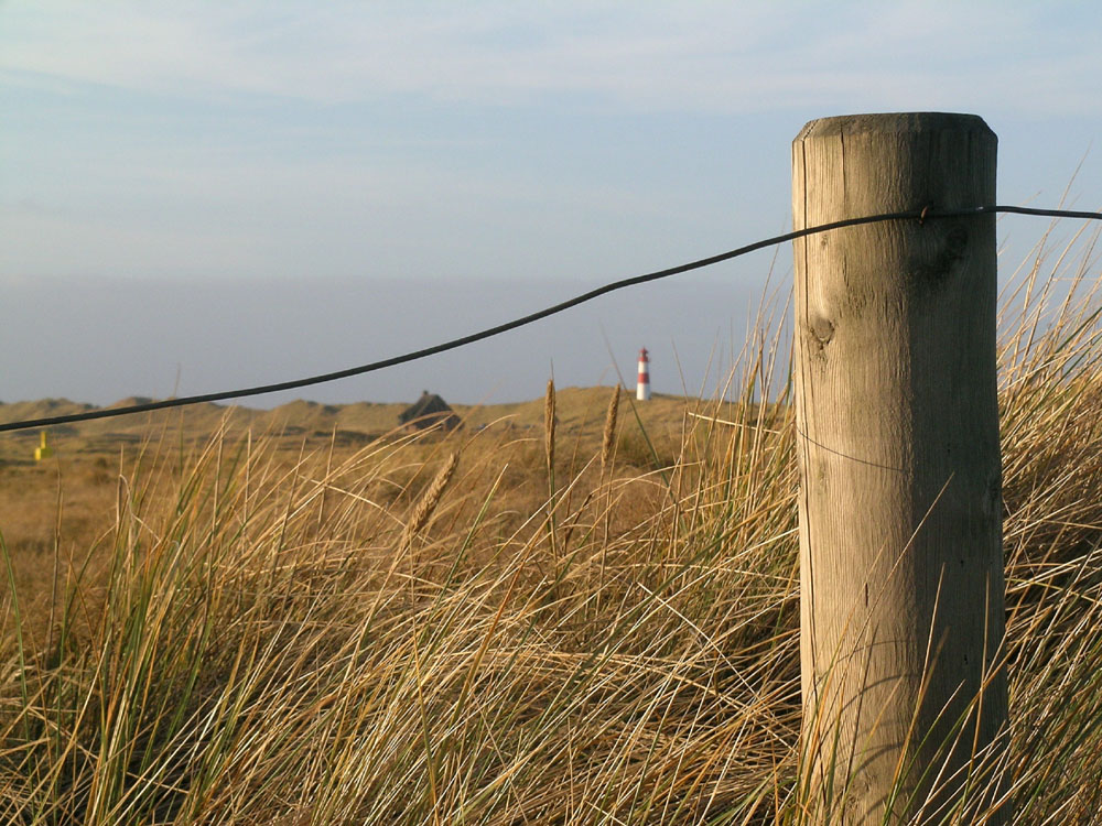 Zaun am Sylter Ellenbogen