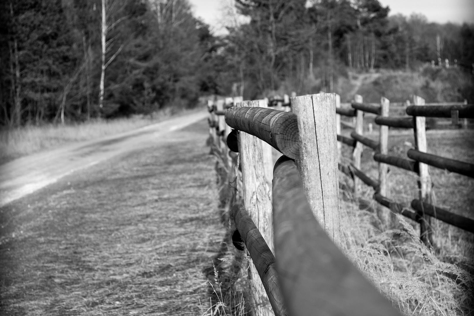 Zaun am Weg