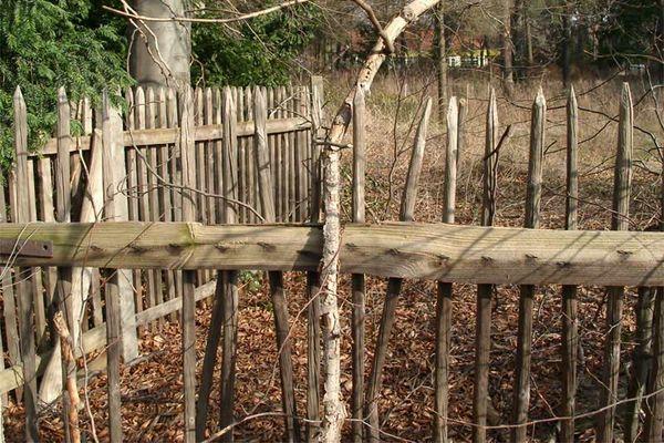 Zaun aus alten Ästen