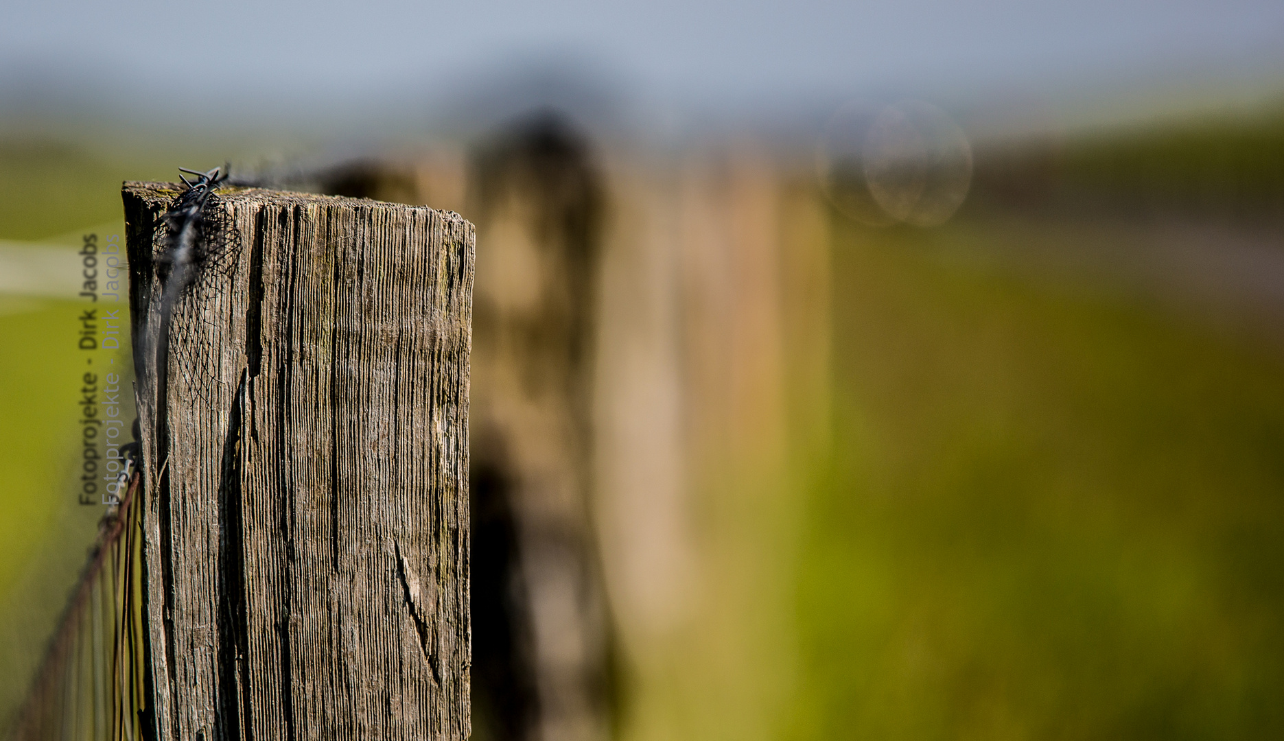 Zaun hinterm Deich