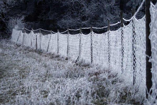 Zaun im Eis