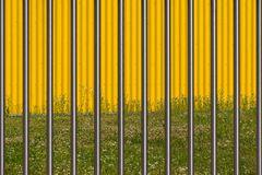 Zaun vor der gelben Wand