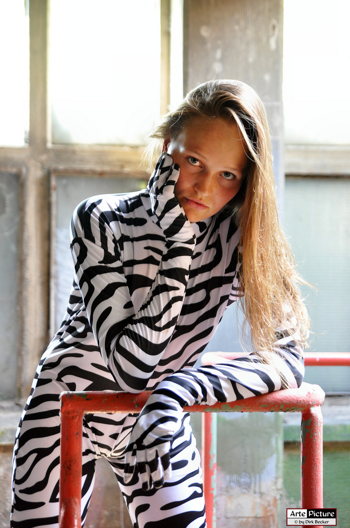 Zebra-Look