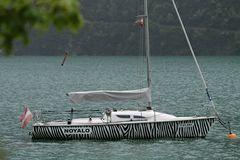 Zebra Segelboot