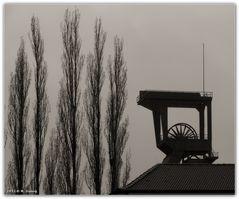 Zeche Holland