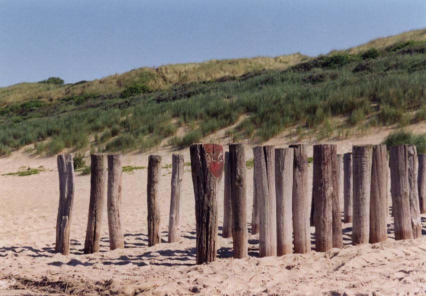 zeeland beach 1